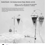 Conferência por Katia Zolotovsky (MIT)